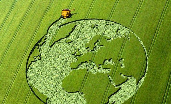 «چشمانداز ۱۰ ساله کشاورزی جهان» ترسیم شد/ تیغ دو لبه در بازار جهانی غذا