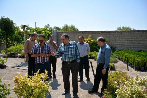 تولید گلخانهای محصولات باغی و معرفی ارقام جدید ضروری است