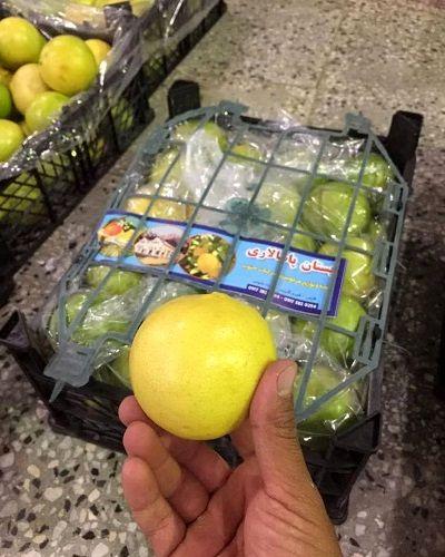 پیش بینی تولید بالغ بر 200 هزار تن لیمو شیرین در قیر و کارزین