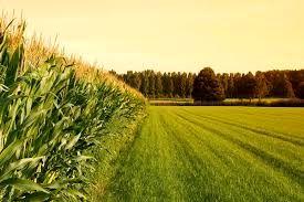 سهم اندک بخش کشاورزی از اعتبارات استان خراسان شمالی