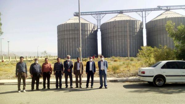 بازدید رئیس سازمان جهاد کشاورزی استان کرمان از تحویل گندم به سیلوهای شهرستان ارزوئیه