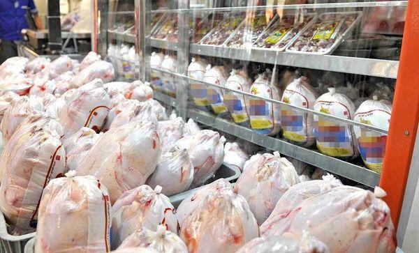 اصفهانیها، مرغهای سنگین را میپسندند