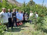 برگزاری  روز مزرعه برداشت انار در شهرستان جلفا