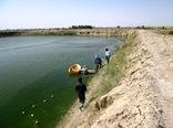 رهاسازی 29 میلیون لاروماهی در آبهای سیستان و بلوچستان