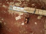 چالش «کشت بیابان» در استرالیا