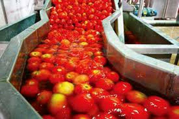 ۶۲ هزار تن به ظرفیت فراوری محصولات کشاورزی استان افزوده شده است