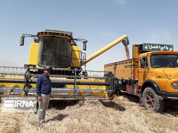 هزینه حمل گندم از مزرعه تا مرکز خرید در بیجار تعیین شد