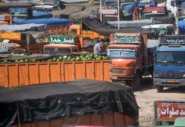 رشد 112 درصدی صادرات محصولات کشاورزی از استان کردستان