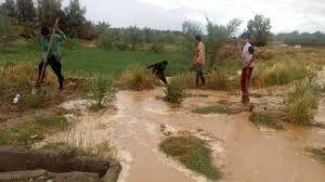 خسارت سیل به بخش کشاورزی مناطق شهداد و گلبافت