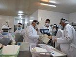 بررسی وضعیت بهداشت آبزیان صادراتی بوشهر توسط چینیها