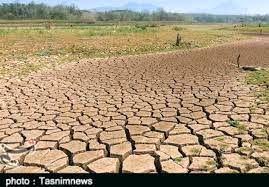 خسارت هزار و ۴۰۰ میلیاردی خشکسالی به کشاورزی