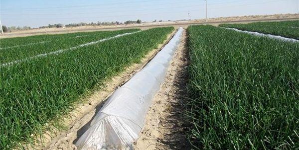 اختصاص ۱۴ میلیارد تومان اعتبار برای جبران خسارت زیرساختهای کشاورزی در سال گذشته
