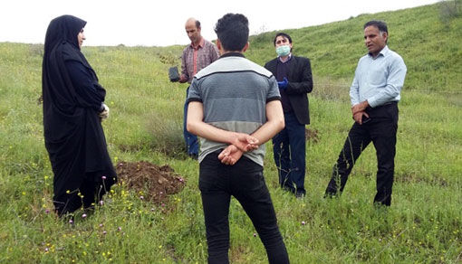 ایجاد باغ الگویی سماق بصورت کشت بافت در شهرستان هوراند برای نخستین بار در کشور