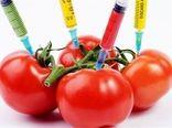 هیچ محصول تراریختهای در آذربایجان شرقی کشت نمیشود