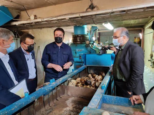 تبیین برنامه های وزارت جهاد کشاورزی در سفر به مرودشت