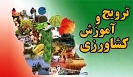 فعالیت اقتصادی زنان روستایی به روش Insie در استان بوشهر