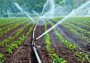اجرای طرحهای آبیاری نوین در سطح  34 هزار هکتار از اراضی کشاورزی خراسان شمالی