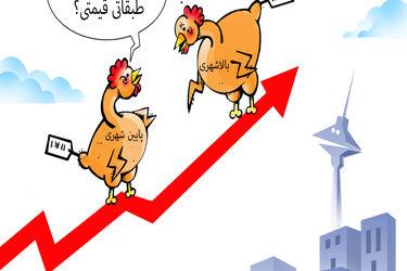 هر کجای شهر قیمت مرغ متفاوت است/ کارتون: فیروزه مظفری