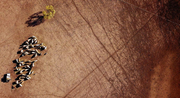 تصویر هوایی از خشکسالی در استرالیا