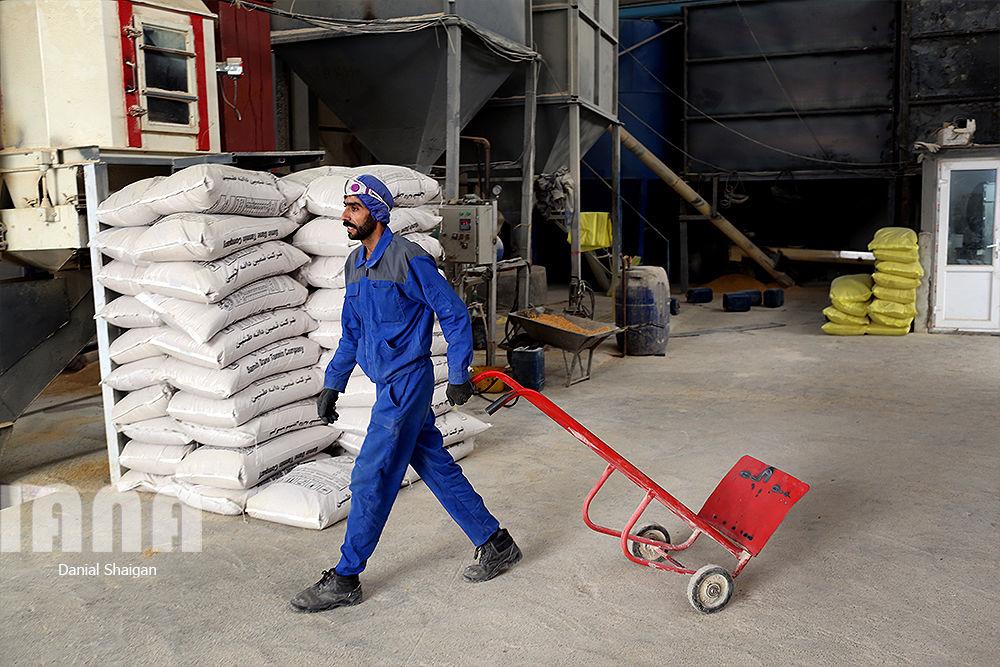کارخانه تولید خوراک دام و طیور