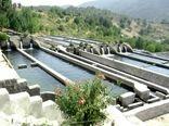 درمزارع پرورش ماهی شهرستان اردل  از مالاشیت گرین استفاده نشده است