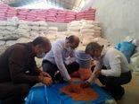 بازدید رئیس سازمان جهاد کشاورزی لرستان از وضعیت فرآوری و بوجاری بذور گندم و جو شهرستان کوهدشت