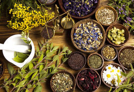 قانون بالای سر گیاهان دارویی