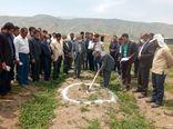 توسعه اقتصادی با ایجاد شهرکهای کشاورزی