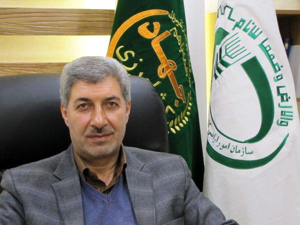 صدور سند برای ۱۱۰ هزار قطعه اراضی کشاورزی در قزوین