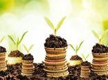 پرداخت ۵۴ میلیارد تومان تسهیلات به طرحهای کشاورزی در خراسان جنوبی