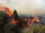 ضرورت آگاهی بخشی در حفظ و حراست ازمنابع طبیعی و پیشگیری از وقوع آتشسوزی