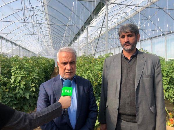 واحدهای تولیدی بخش کشاورزی اشتغالزایی خوبی برای روستاییان ایجاد کرده است