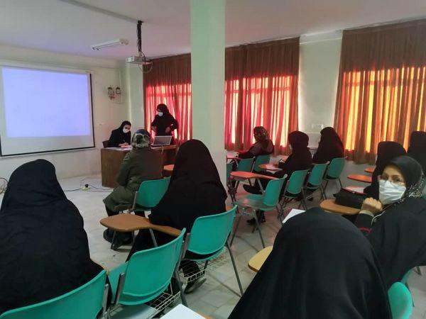 دوره آموزشی کشت گیاهان دارویی در شهرستان تاکستان برگزار شد