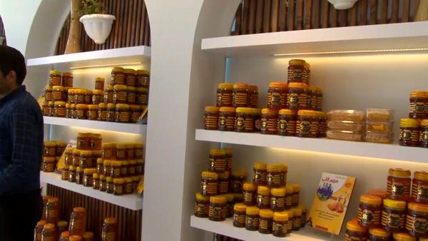 افتتاح سه شرکت تعاونی کشاورزی در نجف آباد