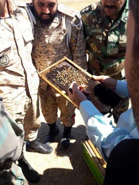 مهارتآموزی  بیش از ۴۰ هزار  نفر از کارکنان وظیفه نیروهای مسلح در حوزه کشاورزی