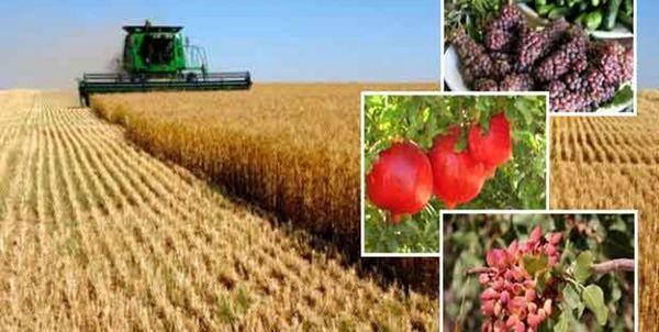 ۱۰۰ برنامه موبایلی برای کشاورزان امروز رونمایی شد