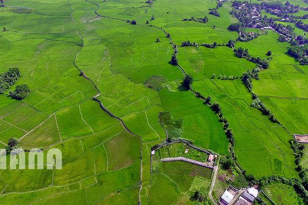 مدیریت ناکارآمد آب علیه کشاورزی است