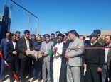 بهرهبرداری از طرح ۵۰۰ راسی پرواربندی بره در شهرستان دلفان