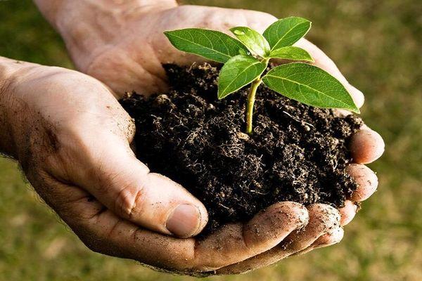 پیش نویس «آیین نامه اجرایی قانون حفاظت از خاک»