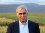 مبارزه با بیماریهای برگی در  ۴۷ هزار هکتار از مزارع گندم استان ایلام
