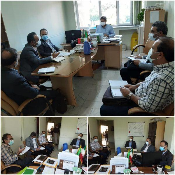 برگزاری نشست هماهنگی بیمه محصولات کشاورزی استان قزوین