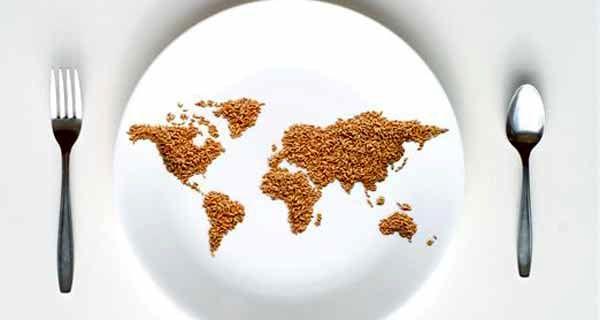 افزایش ۶۶ درصدی سهم صادرات کشاورزی و صنایع غذایی از مجموع صادرات کشور