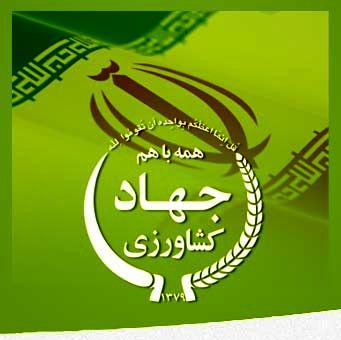 هفته آینده؛ مرکز نوآوری در بوشهر افتتاح میشود