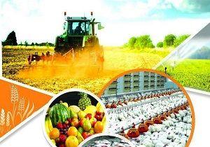 بنیاد برکت ۱۸ هزار شغل در بخش کشاورزی کردستان ایجاد کرد