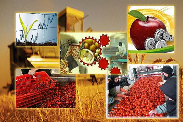 صنایع تبدیلی و تکمیلی در آران و بیدگل حمایت شود