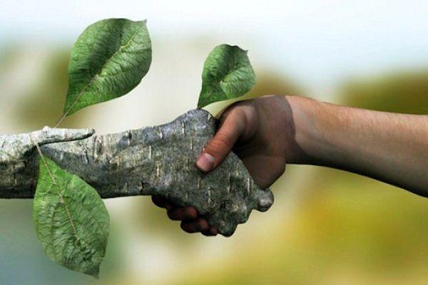 آموزش 200 هزار نفر همیار طبیعت در سال 1400