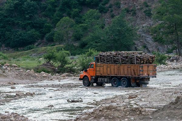 بیش از 3 هزارتن چوب و زغال در چهارمحال و بختیاری کشف شد