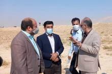 کشت گندم در بیش از ۹۷ هزار هکتار از اراضی استان بوشهر