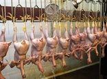 روزانه 7 تن گوشت مرغ در قروه مصرف میشود