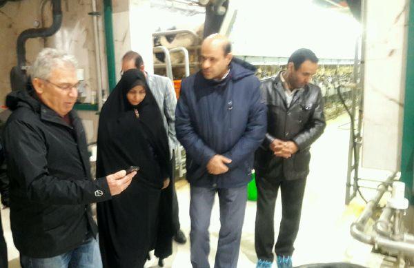 بازدید معاون استاندار قزوین و رئیس سازمان جهاد کشاورزی از یک واحد دامداری در شهرستان بوئین زهرا